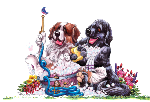 dog grooming Murrieta, California